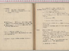 kuzuhara117