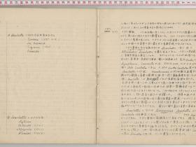 kuzuhara159