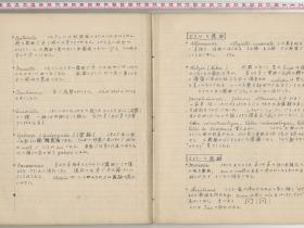 kuzuhara169